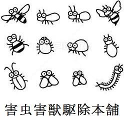 中原区のアシナガバチ駆除は害虫害獣駆除本舗にお任せください