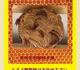 多摩区のハチ駆除、巣の撤去の専門業者