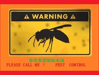 川崎市麻生区のアシナガバチ駆除、スズメバチ駆除