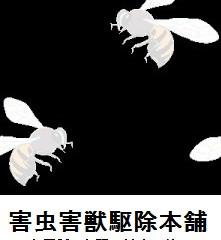 川崎市宮前区の蜂駆除(スズメバチ駆除、アシナガバチ駆除)の格安業者