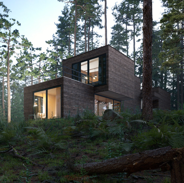 Sustainable Housing - Prefab Home In The Woods