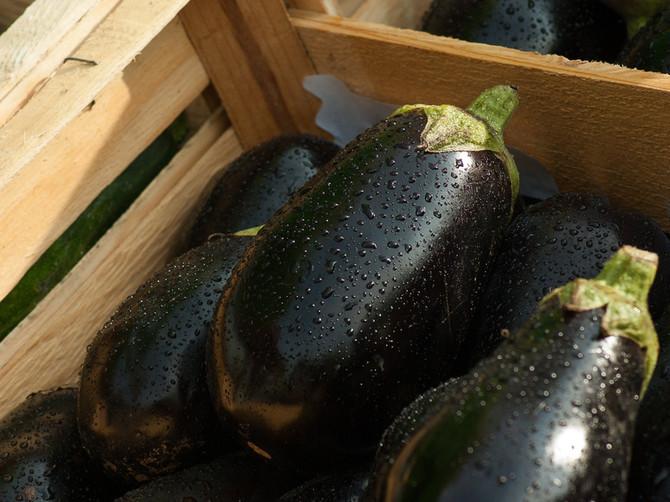 recept: aubergine parmigiana