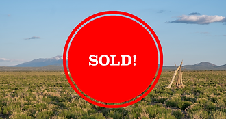 B Sold.png