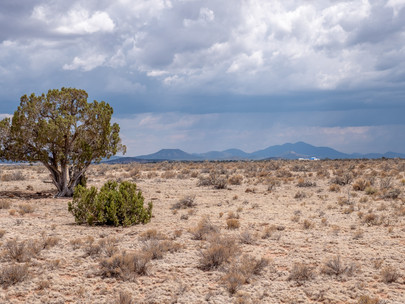 SOLD! Private 1.02 Acres near Williams & Grand Canyon - Lot #073