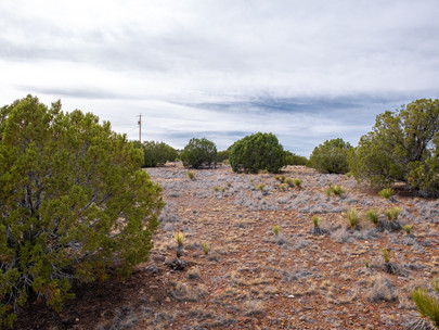 SOLD! - 1.04 Acre with Power, Near Beautiful Concho Lake - 201-27-155