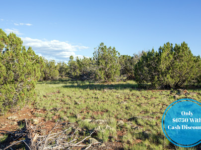 SOLD! - Off Grid 2.4 Acres with Natural Privacy, quick drive to Show Low, AZ! - $199/month
