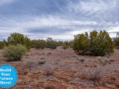 SOLD! - Gorgeous Triangle Shaped 1.03 Acres near Valle, AZ - Lot #9006