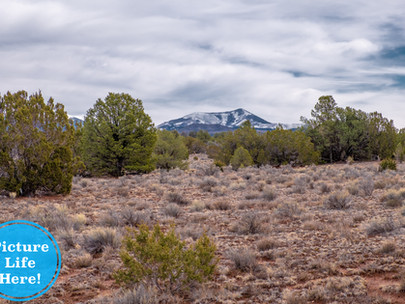 SOLD! - Beautiful 1.05 Acres with Mountain Views near Flagstaff, Grand Canyon - Lot #065