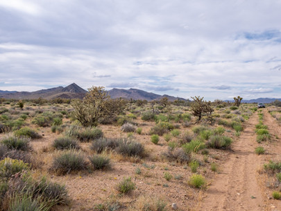SOLD! - Very Private 2.35 Acres near Kingman and Las Vegas - Lot #161