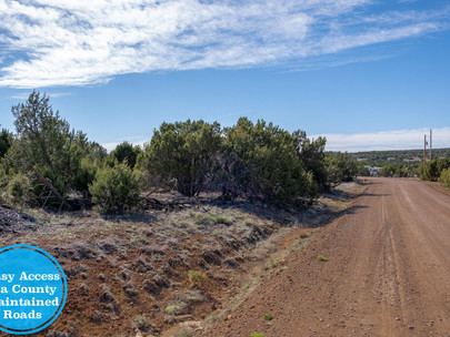 SOLD! - 1.14 Acres with Good Roads & Power Nearby - Near Show Low, 107-12-772
