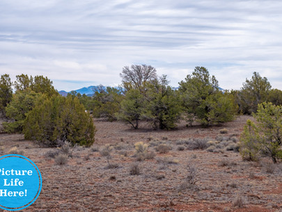 SOLD! - Private, Off-Grid 1.03 Acres near Flagstaff & Grand Canyon - Lot #036