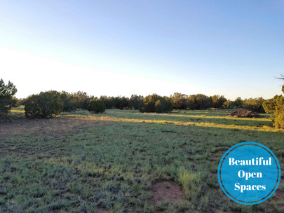 SOLD! Peaceful Off-Grid Lot with Privacy - Only $125/month!