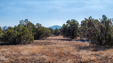 SOLD! - Easy Access 1 Acre with Power Very Close to Show Low!