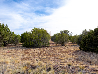 SOLD! - Perfect 1/2 Acre with Power, Water, & Paved Roads in Good Community near Concho Lake - L
