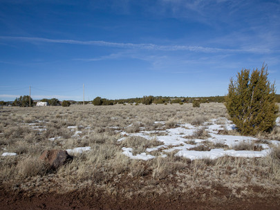 SOLD! - Gorgeous 1.17 acre lot with power and telephone! Vernon, AZ - $199/month