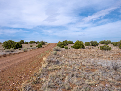 SOLD! - Very Private 1.03 Acres w/ Power near Concho Lake - Lot #126