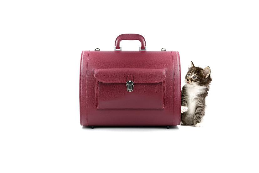 Handmade Toyooka Pet Travel Bag