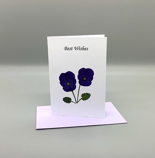 Best Wishes - Purple pansy