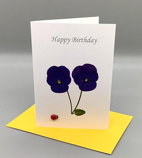 Happy Birthday - Purple pansy and ladybird