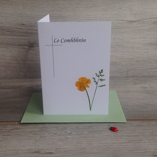 Le Comhbhrón - Sympathy Card with real buttercup flower