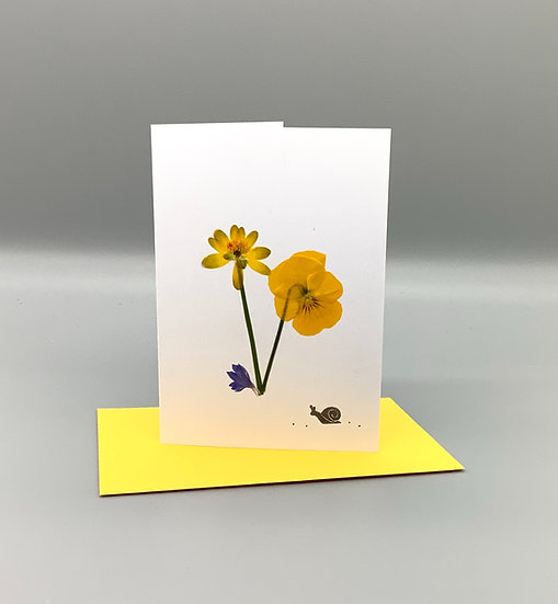 Blank Card - Yellow Pansy