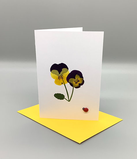 Blank Card - Purple and yellow pansy