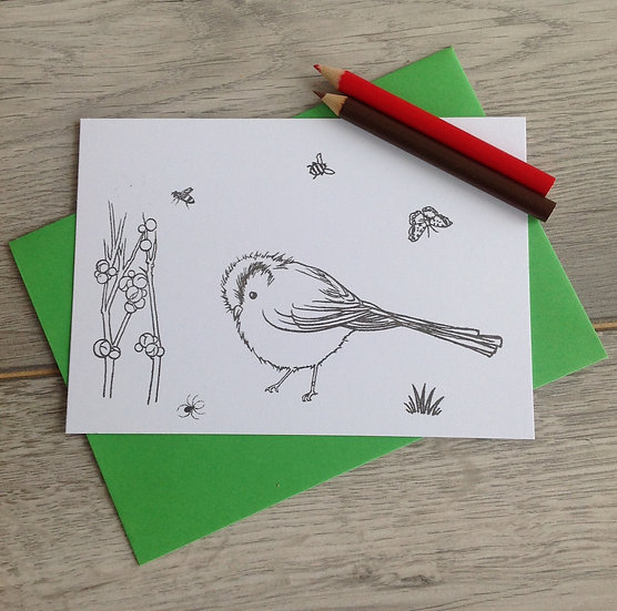 Collection of four Robin cards to colour with pencils