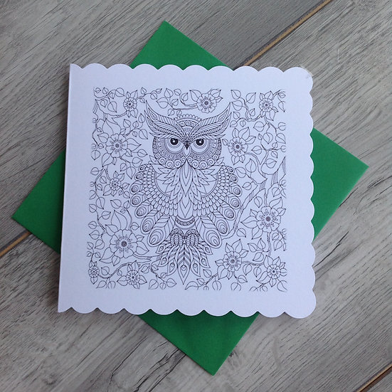 Collection of four Owl cards to colour with pencils included