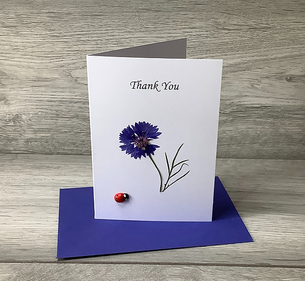 Thank You - Cornflower