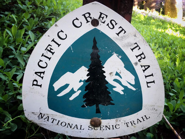 Hiking Along the PCT