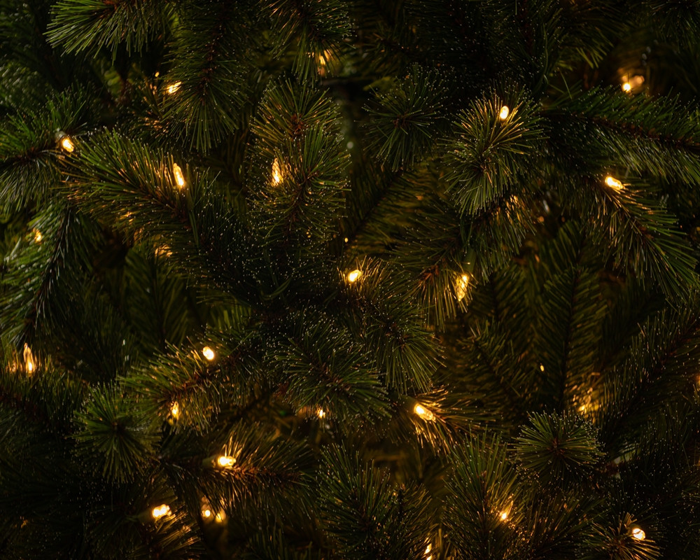 Frosted Ontario Green Pine 1.jpg