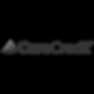 carecredit-vector-logo bw.png