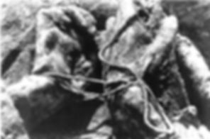 Website Katyn Wood bound hands.jpg