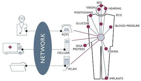 Website Biopotentials.JPG