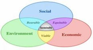Website Agenda 21 diagram.JPG