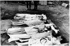 Website Children dead.PNG