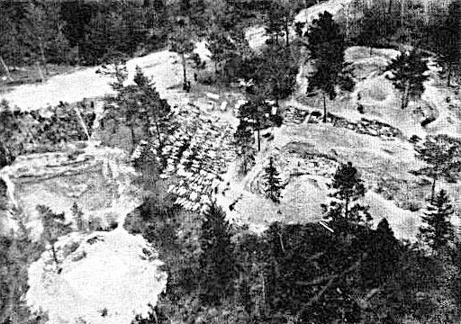 Website Katyn Wood Graveyard.jpg