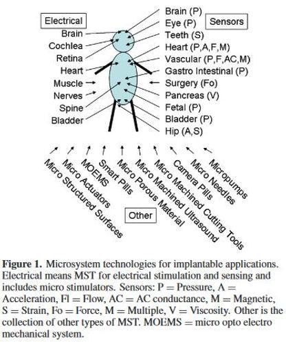 Website Microsystem.JPG