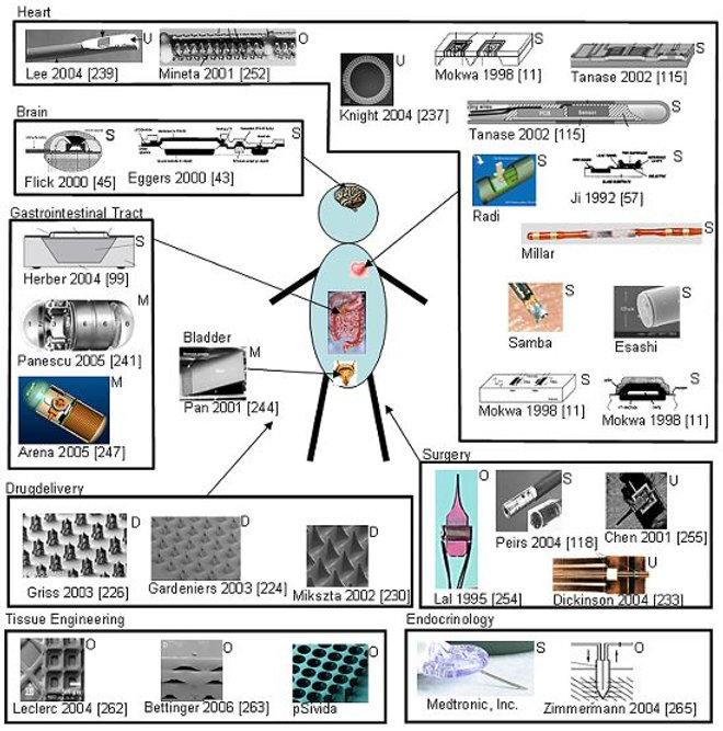 Website Micromechnical system 2.JPG