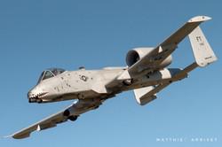 A-10 Warthog diving