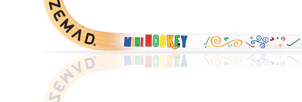 Stick Azemad Mini Hockey