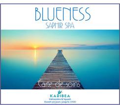 CDES 1ER PAGE CARTE DE SOIN BLUENESS.jpg
