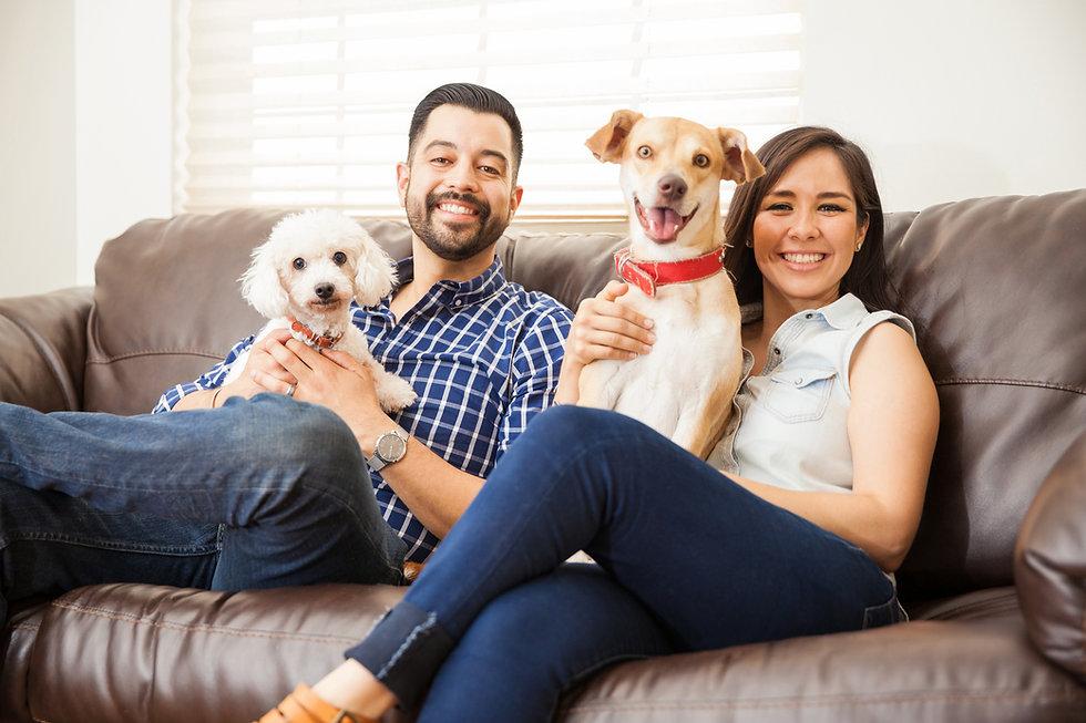 Dog Family 001.jpg