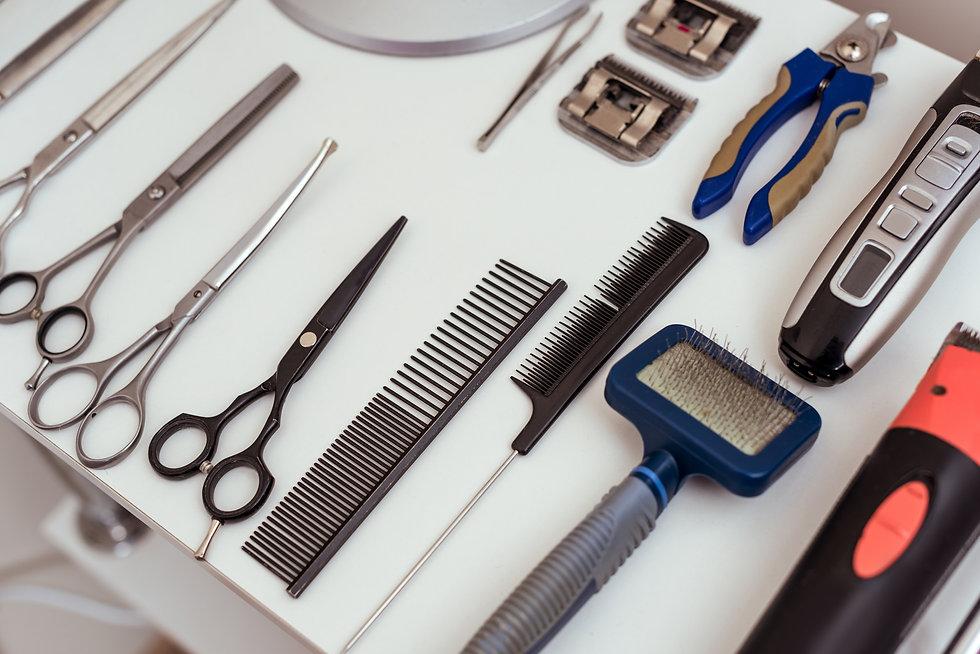 Dog Grooming Tools.jpg