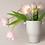 Thumbnail: Fog White Vase