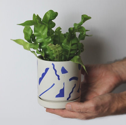 Hand-Painted Planters