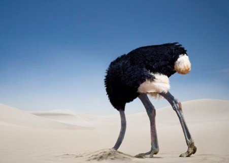 Can we learn from ostriches?