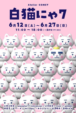 白猫にゃ7
