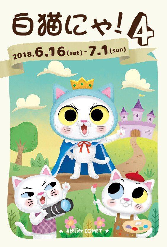 「白猫にゃ!4」