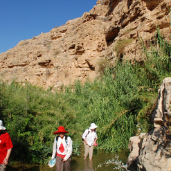 Desert - Wading photo.JPG